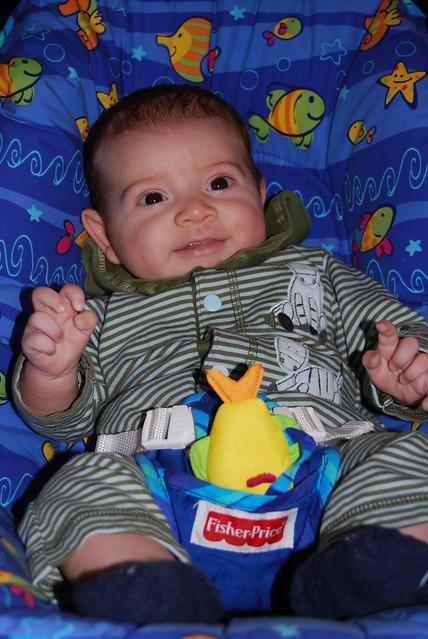 Baby P Nov 2008