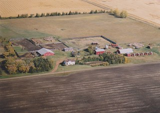Farm 1993