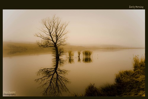 morning autumn winter mist lake reflection fog sunrise canon early fishing romania 2009 cluj supershot platinumphoto