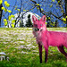 I'd Rather See A Pink Fox Than A Purple Cow! by ArteZoe