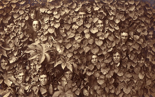Seventeen men in the bushes (did I miss any?), circa 1910