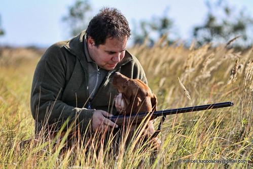 hungary pointer vizsla hunter vadász 2009 hungarian hounting vadászat