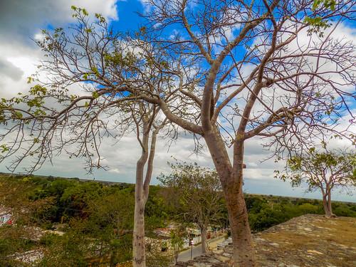 Cholul, Yucatan