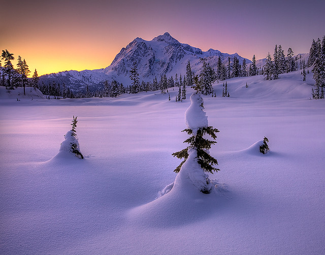 Mt Shukasan From Picture Lake In Winter
