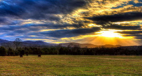 sunset sky sun rural cow farm tennessee explore rays middle murfreesboro thechallengefactory