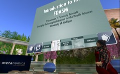 SL: Virtual Ability: Introduction to the FDASM