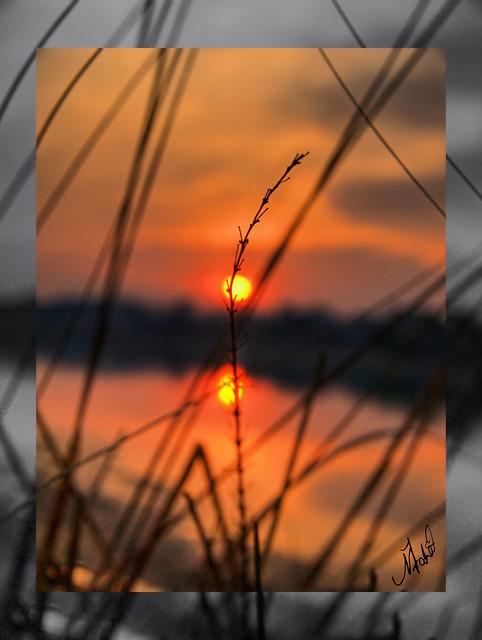 Silhouette by Muhammad Fahad Raza