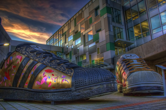 Adidas Oregon Shoes