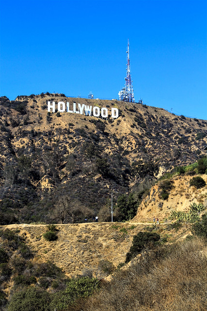 Hollywood Sign #1