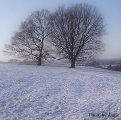 Winter in Kent 2009/10