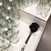 IP249   IKEA, 23.02.2017 15:34:59 by -masru-