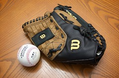 hand(0.0), finger(0.0), protective gear in sports(1.0), ball(1.0), glove(1.0),