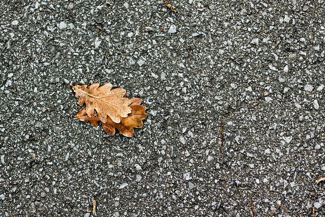 Une autre journée froide d'automne
