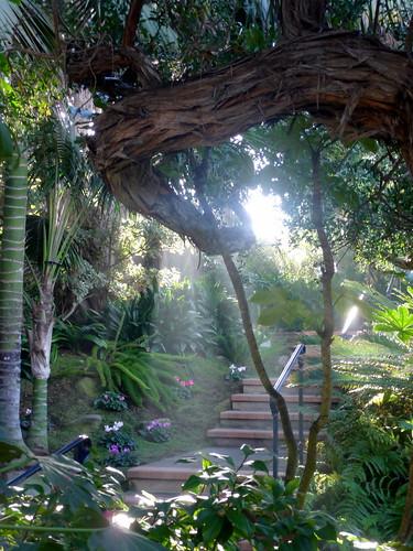 Sun Shadows Meditation Gardens Self Realization Fellowship Encinitas Ca