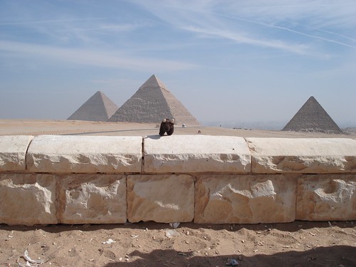 Buddy at the Great Pyramids