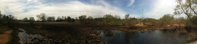 Swamp Meet