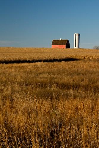 red abandoned field barn corn unitedstates hill bluesky silo hadley mn prairiegrass