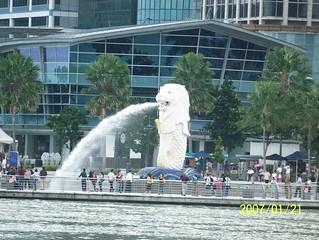 Aquarium की छवि. sculpture statue singapore merlion merlionpark