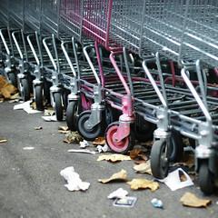 les courses en rose