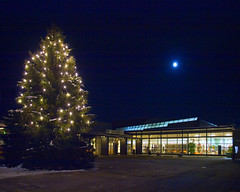Julegrana på Jessheim