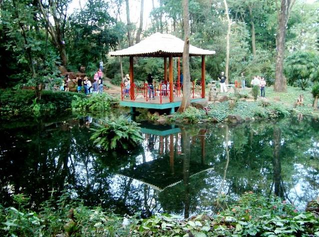 cerca para jardim ribeirao preto : cerca para jardim ribeirao preto:Bosque,Jardim Japonês- Ribeirão Preto.