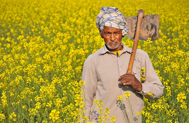 The Indian Farmer Photo [20000+ Views] | Flickr - Photo ...