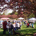 Michigan Heart Walk 2009