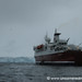 Getting Back on the MS Expedition - Antarctica