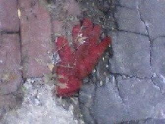 Flattened glove 3