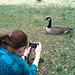 Goose Whisperer by J David Allen