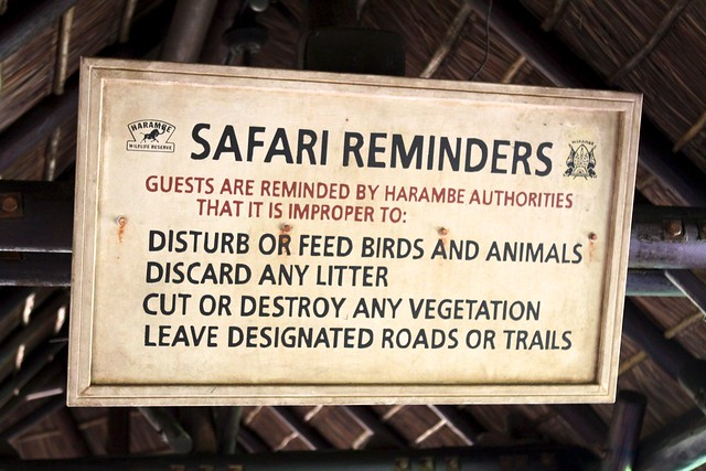 Kilimanjaro Safari Signs 2  Explore Anthonut's Photos On. Monkey Brains Internet IV Therapy Los Angeles. Meaning Of Liability Insurance. Home Insurance Texas Rates Gargoyle 3d Model. Maryland Board Of Cosmetology. Global University Accreditation. Dropped Hard Drive Recovery Rn To Msn Bridge. Customer Risk Management Lca Bank Corporation. Airline Tickets Credit Card Eppp Pass Rate