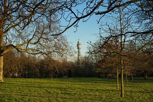 Regent's Park - BT Tower from Regent's Park