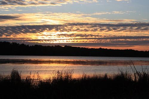 morning sky water alexandria sunrise dawn virginia va potomac marsh potomacriver alexandriava dykemarsh