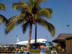 ハワイ島コナ空港