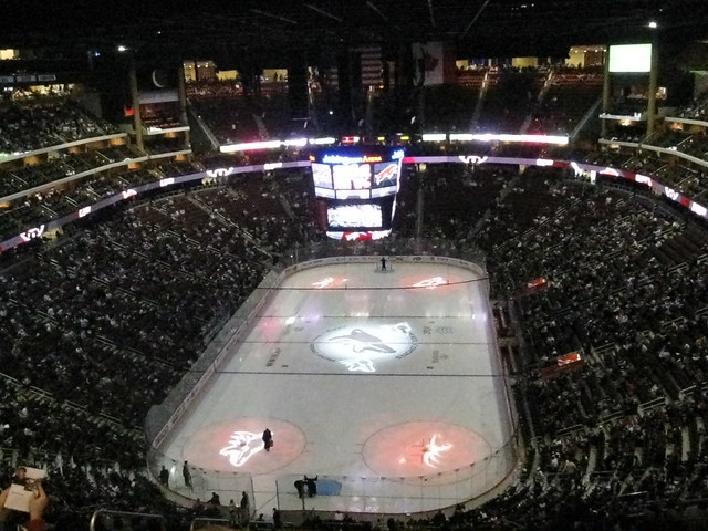 phoenix coyotes arena v - photo #27