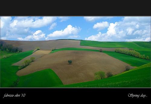 italy nature landscape italia natura campagna fabrizio marche paesaggio 2010 springday olivi arcevia giornatadiprimavera