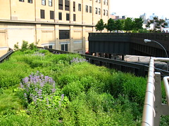High Line, NYC: Northern spur, now deadends into building by Vilseskogen, on Flickr