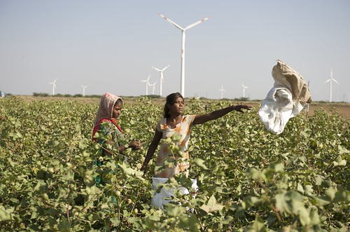 Kutch, Farming - India. Source: flickr/danishwindindustryassociation http://www.flickr.com/photos/danishwindindustryassociation/4271332050/in/photostream/