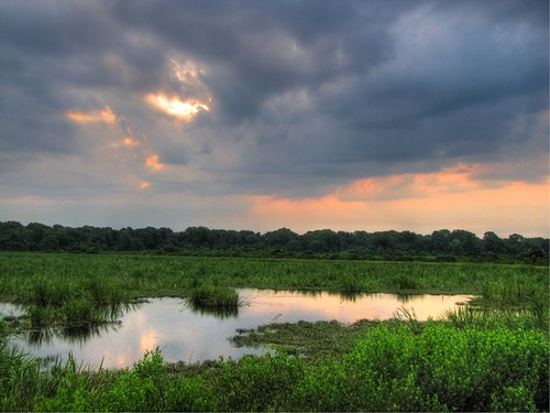 sunrise georgia hdr highdynamicrange augustaga dynamicphotohdr dphdr phinizyswampnaturepark