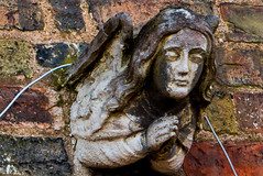 Angel neglected?