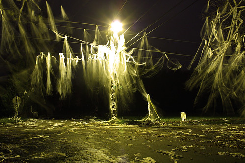 longexposure night paper exposure pennsylvania egg toilet pa vandalism mischief tp goosy goosie micheif