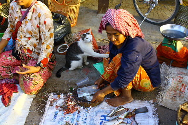 Kampong Cham, 23/11/2009