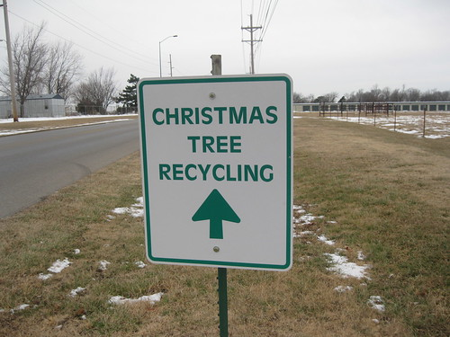 christmas tree recycling dropoff 3 by sdminor81, on Flickr