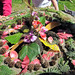 "Land Art by 2nd Graders, ""Tropical Tree""; YES Fundraiser Project"
