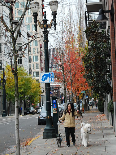 Pearl District, Portland, Oregon