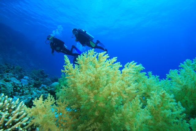 El agujero azul de Dahab (más conocido como Blue Hole), Egipto, El Mar Rojo.
