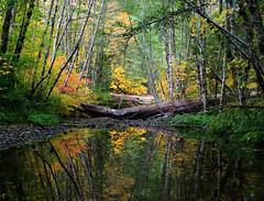 fall rainbow reflection