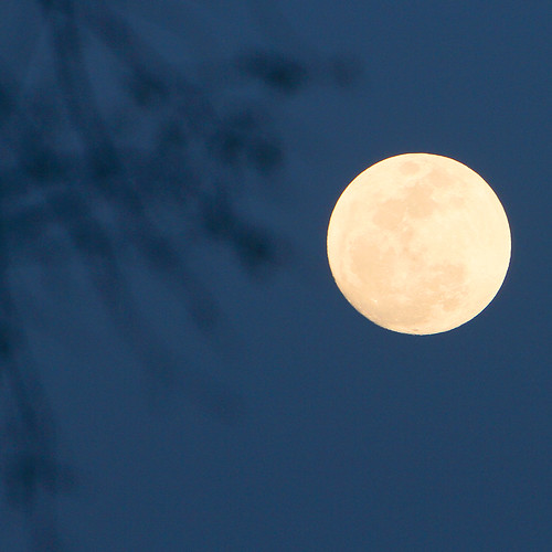 beneath the pale blue moon...