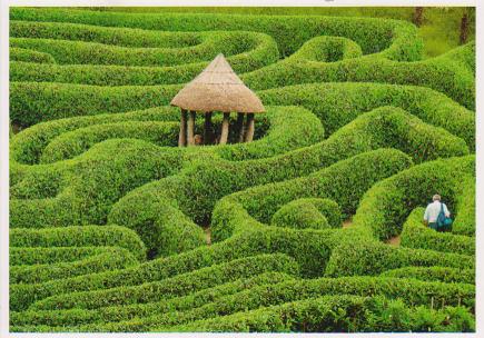 Garden Labyrinth Flickr Photo Sharing