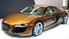 Chicago Auto Show 2010 (47)